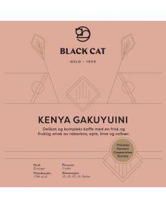 Black Cat Kenya Gakuyuini